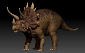 3d realistic triceratops