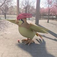 3d model pokemon pidgeotto