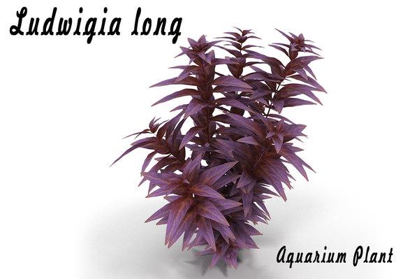 3d ludwigia aquarium plant