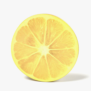 3d lemon slice