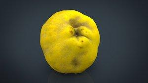 grapefruit fruit 3d model