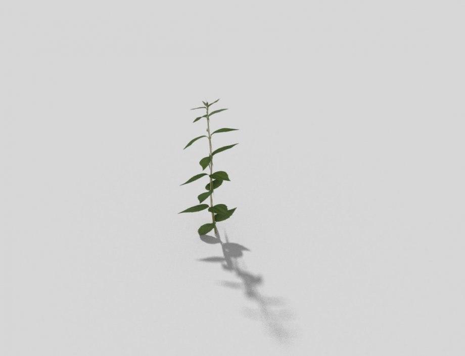 plant games x