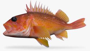 3d greenspotted rockfish model