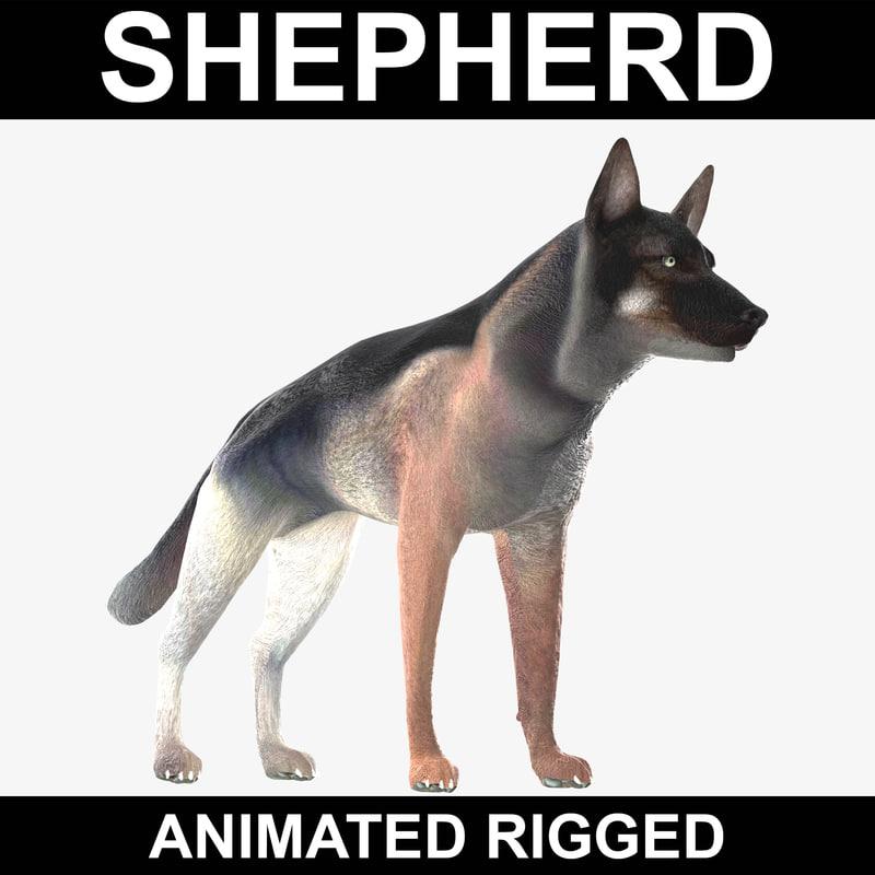 realistic german shepherd rigged 3d model