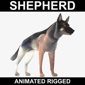 realistic german shepherd rigged 3d model