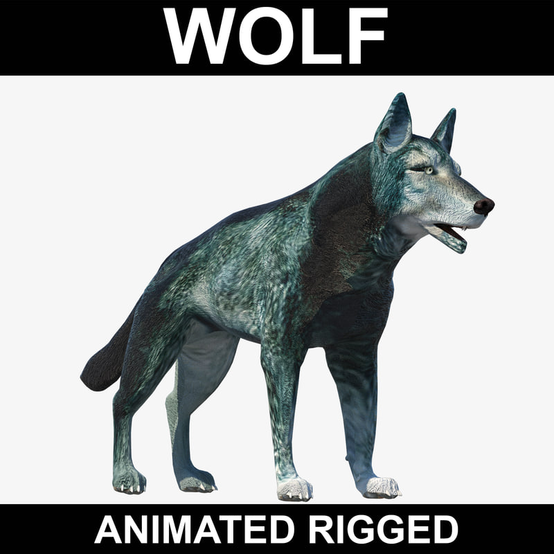 realistic wolf rigged 3ds