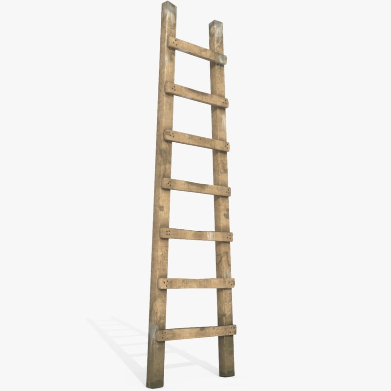 wood old ladder max