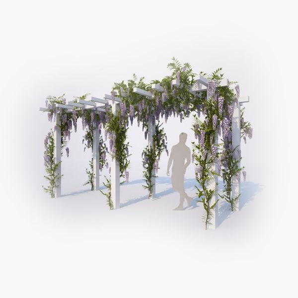 wisteria flowering 01 max