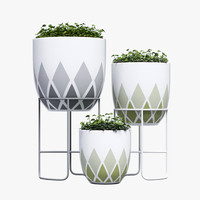 3d max design harlequin pot