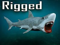 white shark 3d max