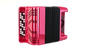 accordion bayan 3ds