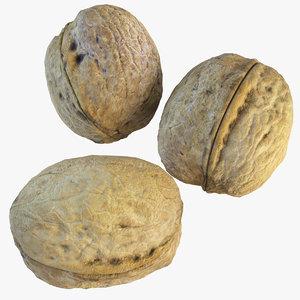 3d walnut nut