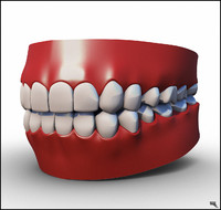 cartoon teeth 3d max