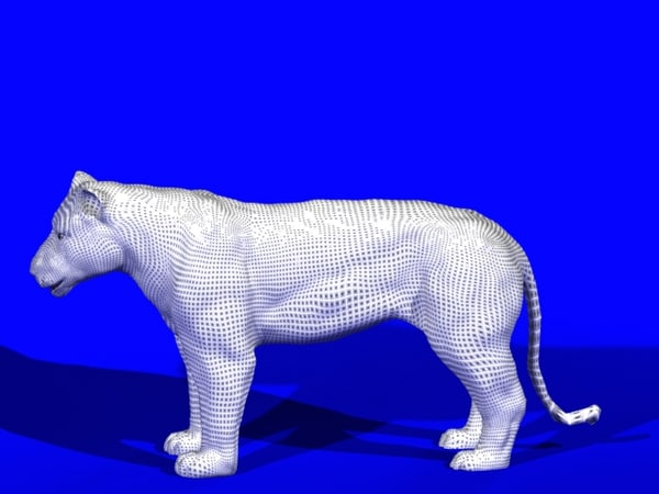 3d lioness animation