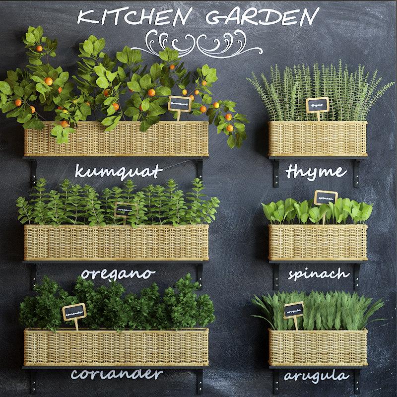 3d model kitchen garden