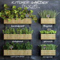 kitchen garden 3d model
