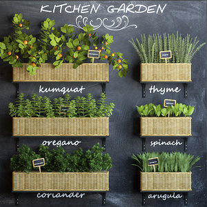 3d model kitchen garden