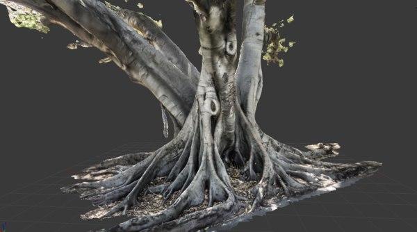 3d model tree trunk 2
