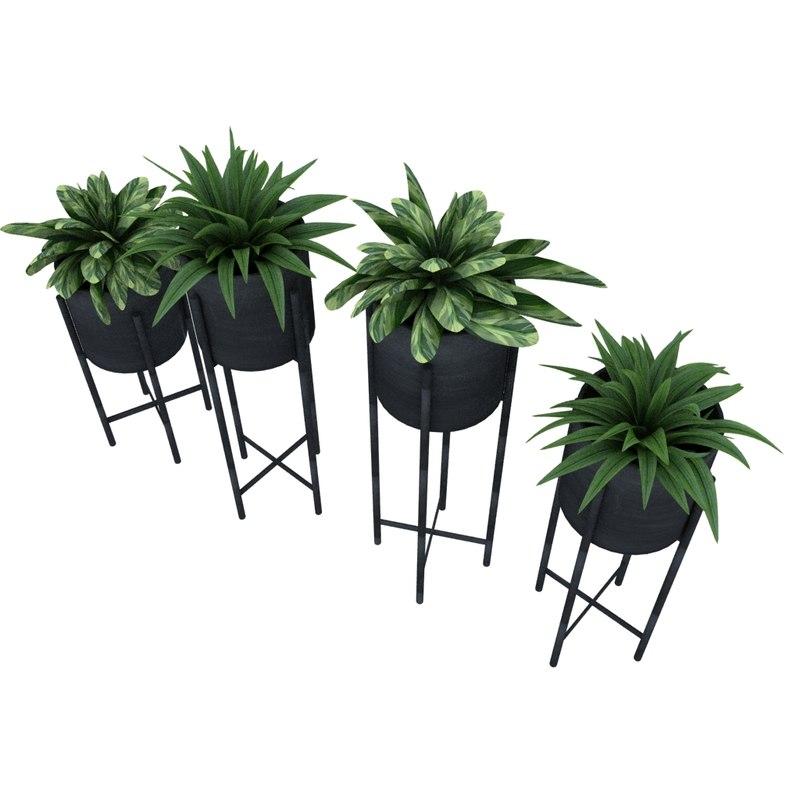 3d plants 1