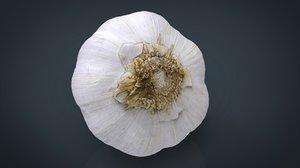 photorealistic garlic 3d max