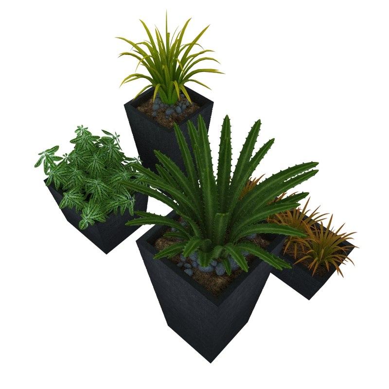 3d plants 2