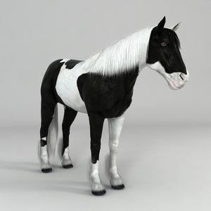 3d realistical horse model