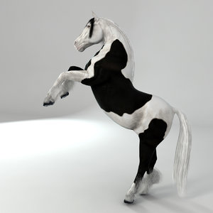 realistical horse rigged 3d model