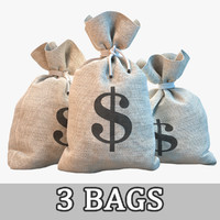 3ds money bags