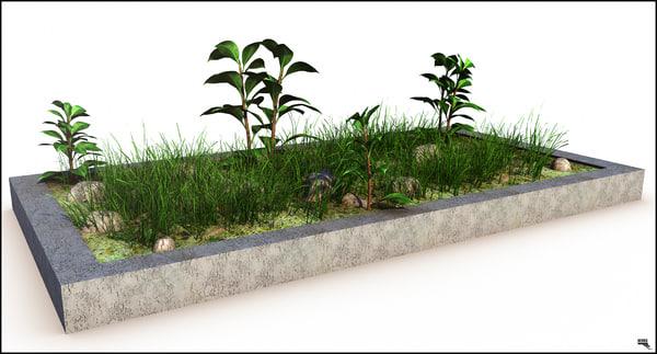 grass herb 3d model