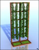 liana plant wall 3d model