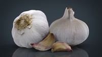 3d model garlic clove
