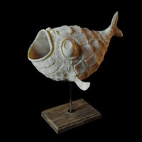 3d model fish decor