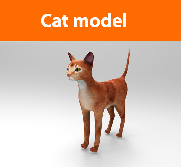cats feline obj