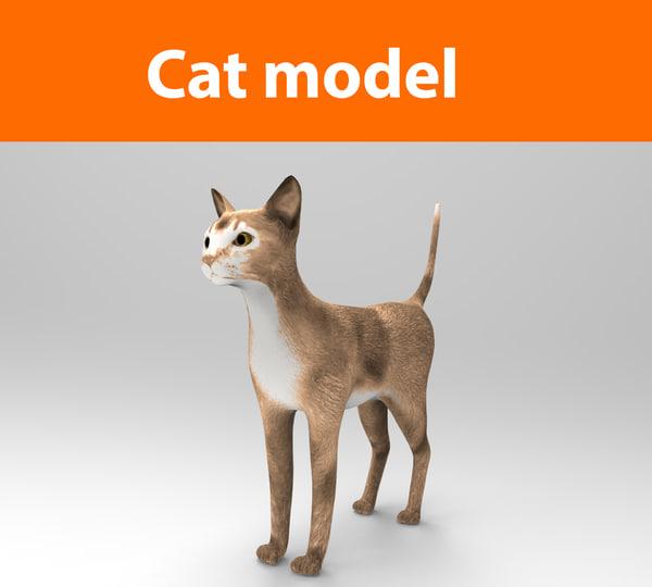 cat ready : 3d model