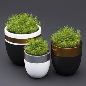 design royal pot 3d model
