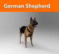 3d german shepherd dog model