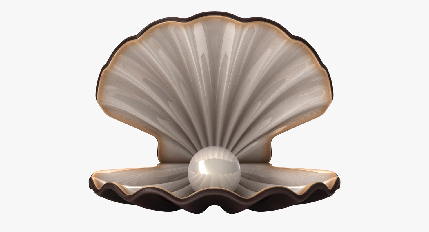pearl shell 3d max