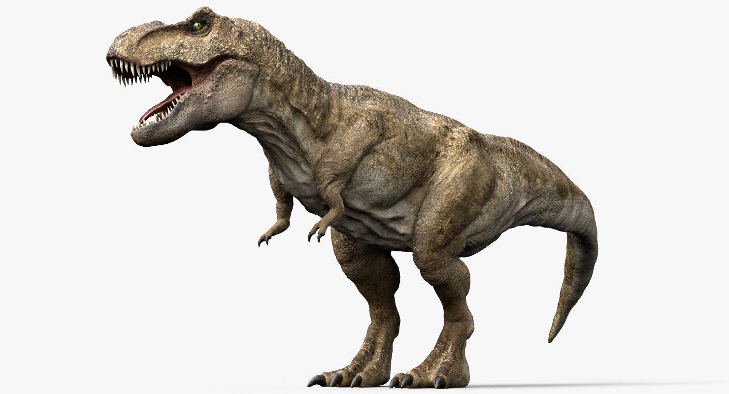 3d model v-ray rigged rex