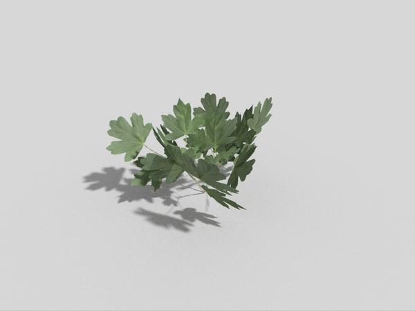 fern games 3d 3ds