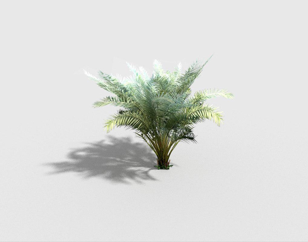 palm plant 3d 3ds