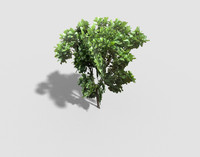3d model games tree