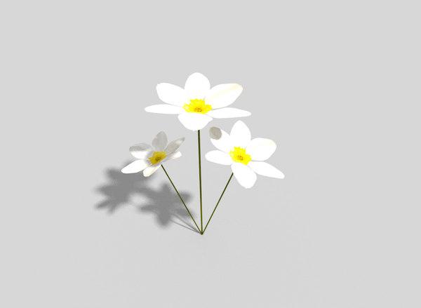 3d flower games model