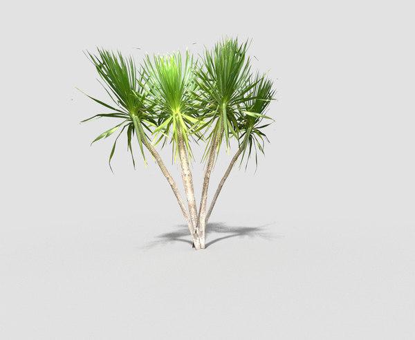 3d tropical tree