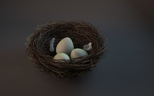 bird s nest 3d c4d
