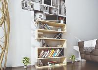 Modern Bookshelve