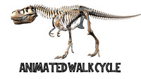 T.rex Skeleton Walk Cycle Animation (Rigged)