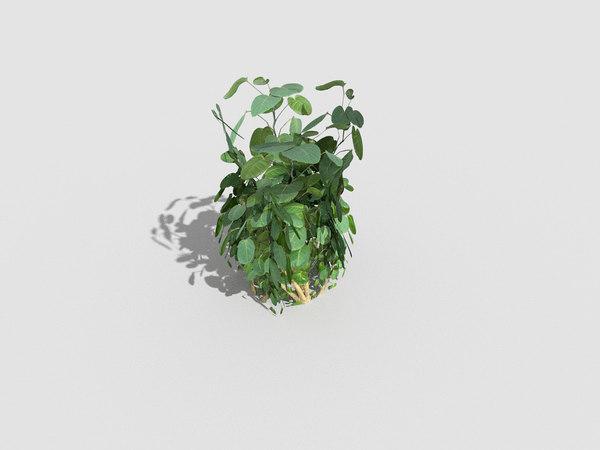 obj plant games