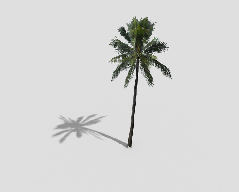 how to make model palm trees