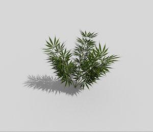 3d model flower landscape