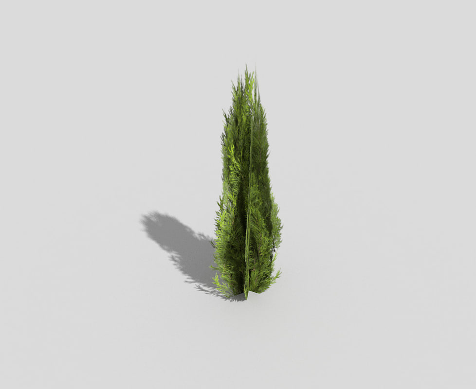 3d shrub games